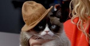 Grumpy Cat (Bild: dpa)