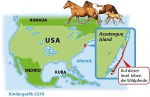 Kindergrafik: Wild und frei: Die Insel der Pferde (ai-eps)