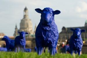 Diese Schafe sind nicht echt, sondern Kunst. Bertamaria Reetz und Rainer Bonk haben sich das Kundwerk ausgedacht. Die blauen Schafe stehen in der Stadt Dresden. (Foto: dpa)