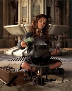 """""""Harry Potter und die Kammer des Schreckens"""""""